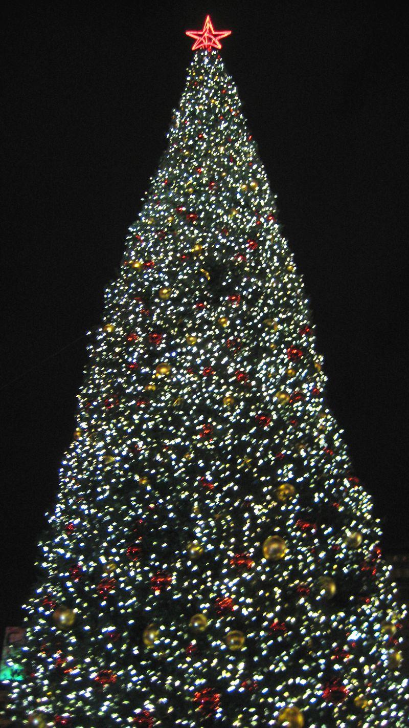 Christmas 2009 019